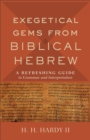 Exegetical Gems from Biblical Hebrew : A Refreshing Guide to Grammar and Interpretation - Book