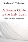 Shorter Guide to the Holy Spirit : Bible, Doctrine, Experience - Book