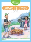 What Is Fire? - eBook