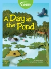 A Day at the Pond - eBook