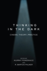 Thinking in the Dark : Cinema, Theory, Practice - eBook