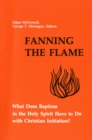 Fanning the Flame : What Does Baptism in the Holy Spirit Have to Do with Christian Initiation? - eBook