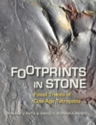 Footprints in Stone : Fossil Traces of Coal-Age Tetrapods - eBook