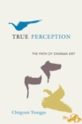 True Perception : The Path of Dharma Art - eBook