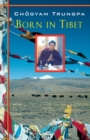 Born in Tibet - eBook