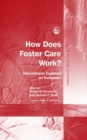 How Does Foster Care Work? : International Evidence on Outcomes - eBook