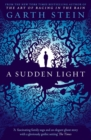 A Sudden Light - eBook