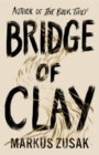 Bridge of Clay - Book