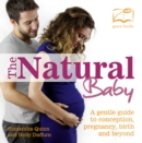 The Natural Baby : A gentle guide to coneption, pregnancy, birth and beyond - eBook