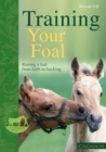 Training Your Foal - eBook
