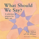 What Should We Say? - eBook