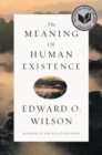 The Meaning of Human Existence - Book