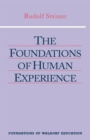 The Foundations of Human Experience - Book