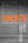 Concrete : From Ancient Origins to a Problematic Future - eBook