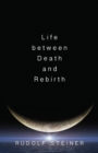 Life Between Death and Rebirth : The Active Connection Between the Living and the Dead - Book