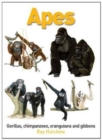 Apes: Gorillas, Chimpanzees, Orangutans and Gibbons - Book