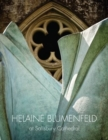 Helaine Blumenfeld at Salisbury Cathedral - Book