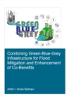Combining Green-Blue-Grey Infrastructure for Flood Mitigation and Enhancement of Co-Benfits - eBook