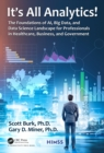 It's All Analytics! : The Foundations of Al, Big Data and Data Science Landscape for Professionals in Healthcare, Business, and Government - eBook