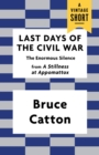 Last Days of the Civil War : The Enormous Silence - eBook
