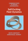 Cambridge Texts in Applied Mathematics : Self-Exciting Fluid Dynamos Series Number 59 - Book