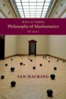 Why Is There Philosophy of Mathematics At All? - Book