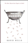 Prime Numbers : The Most Mysterious Figures in Math - eBook