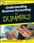 Understanding Business Accounting For Dummies - eBook