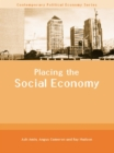 Placing the Social Economy - eBook