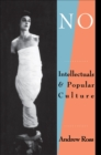 No Respect : Intellectuals and Popular Culture - eBook