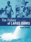The Future of Large Dams : Dealing with Social, Environmental, Institutional and Political Costs - eBook