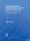 Corporate Social Responsibility, Human Rights and the Law : Multinational Corporations in Developing Countries - eBook