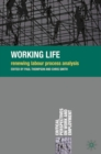 Working Life : Renewing Labour Process Analysis - eBook