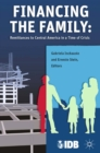 Financing the Family : Remittances to Central America in a Time of Crisis - eBook
