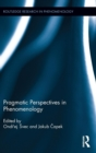 Pragmatic Perspectives in Phenomenology - Book