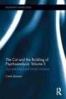 The Cut and the Building of Psychoanalysis: Volume II : Sigmund Freud and Sandor Ferenczi - Book