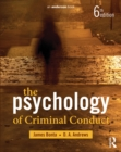 The Psychology of Criminal Conduct - eBook