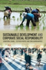 Sustainable Development and Corporate Social Responsibility - eBook