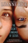 The Secret Language of Sisters - Book