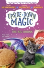 The Big Shrink (Upside-Down Magic #6) - Book