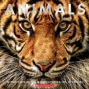 Animals : Witness Life in the Wild Featuring 100s of Species - Book