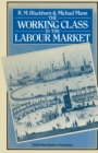 The Working Class in the Labour Market - eBook