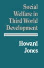 Social Welfare In Third World Development - eBook