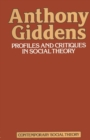 Profiles & Critiques in Social Theory - eBook