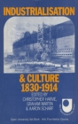 Industrialisation and Culture : 1830-1914 - eBook