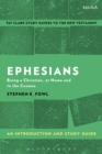 Ephesians: An Introduction and Study Guide : Being a Christian, at Home and in the Cosmos - eBook