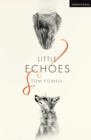 Little Echoes - eBook