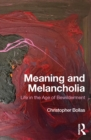 Meaning and Melancholia : Life in the Age of Bewilderment - eBook