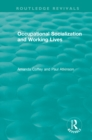 Occupational Socialization and Working Lives (1994) - eBook