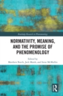 Normativity, Meaning, and the Promise of Phenomenology - eBook